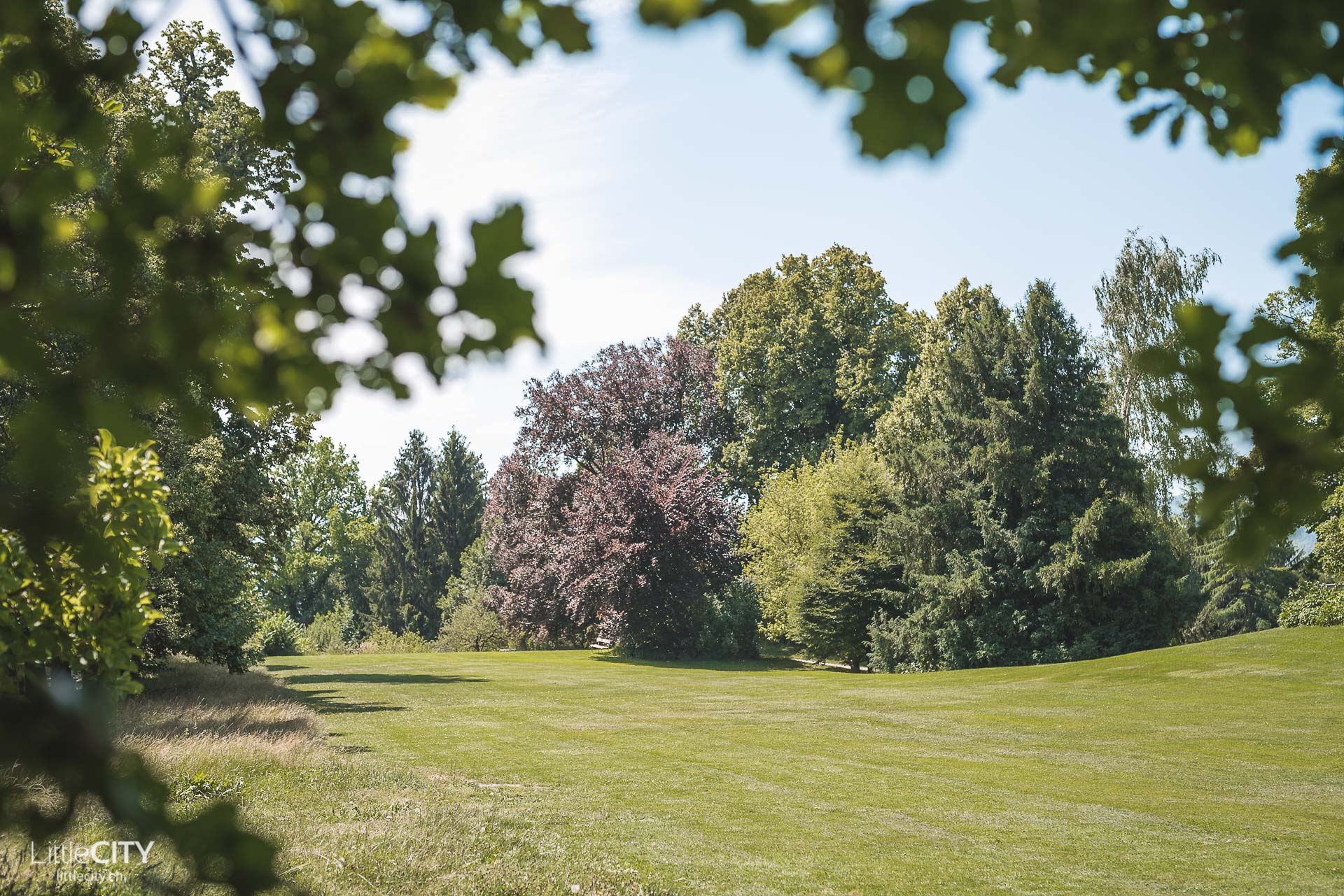 Rieterpark Zürich Insider Tipp