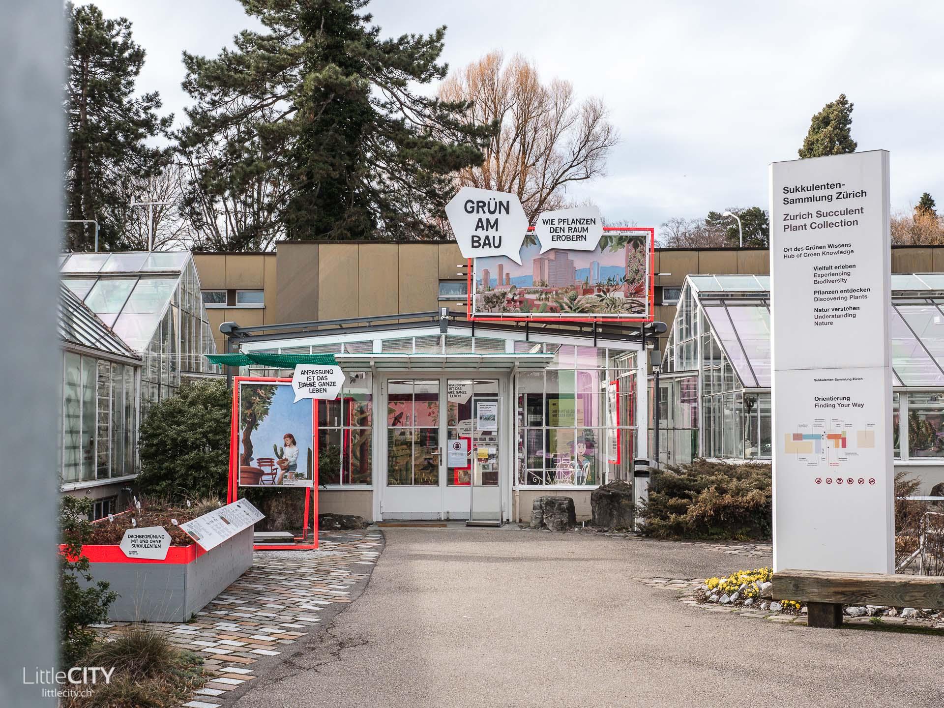 Sukkulenten Sammlung Zürich Geheimtipp