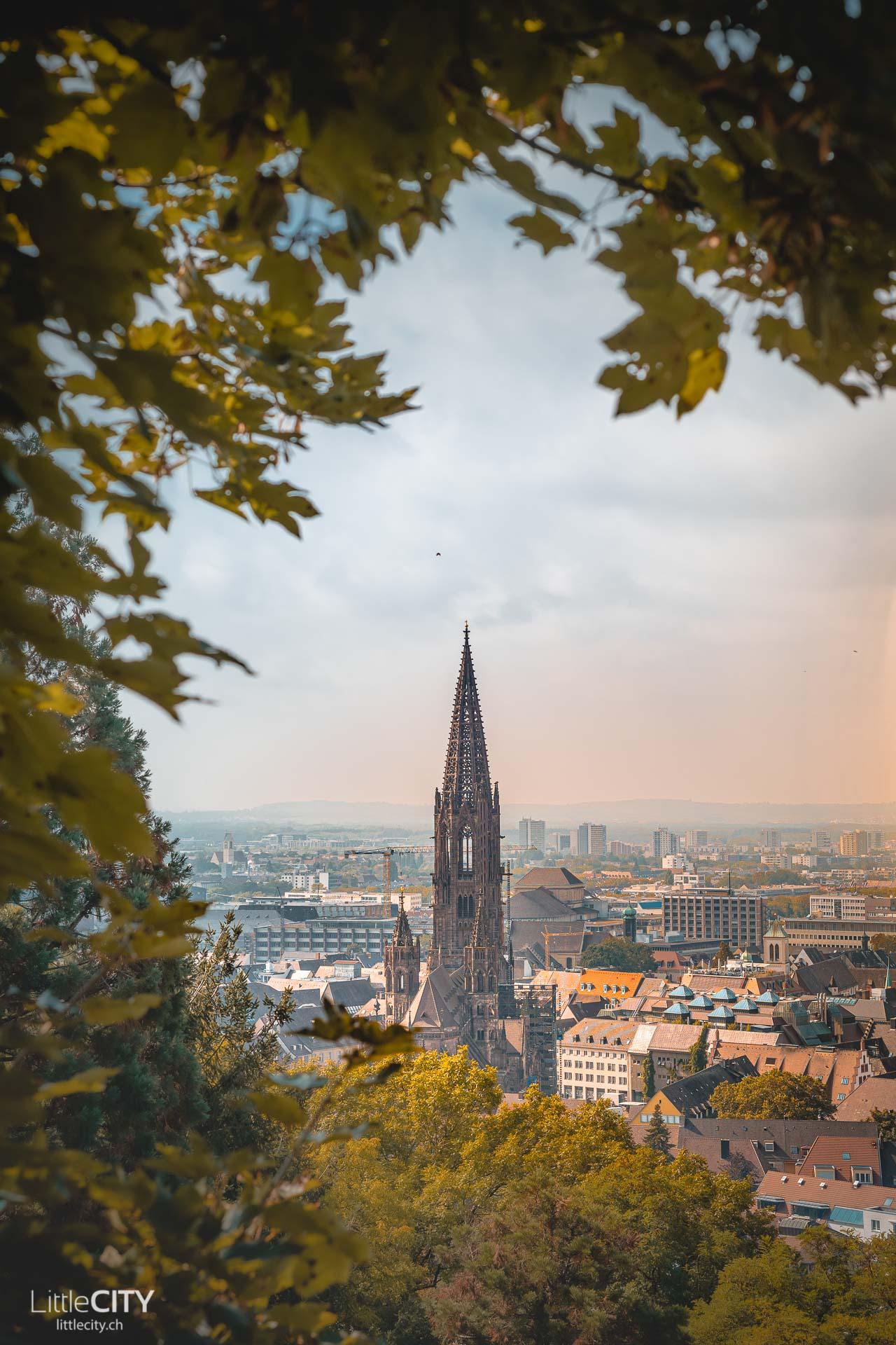 Freiburg im Breisgau Schlossberg Aussichtspunkt
